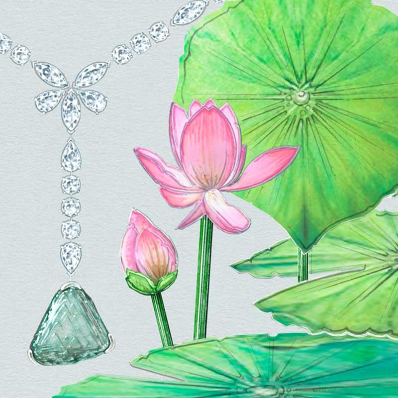 Awakening Lotus