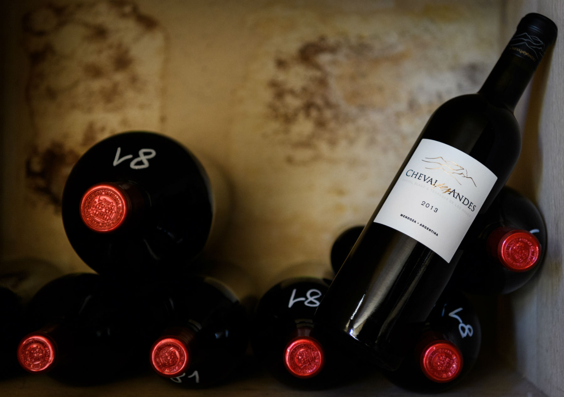 How Cheval Des Andes Brought Bordeaux Wine Making To