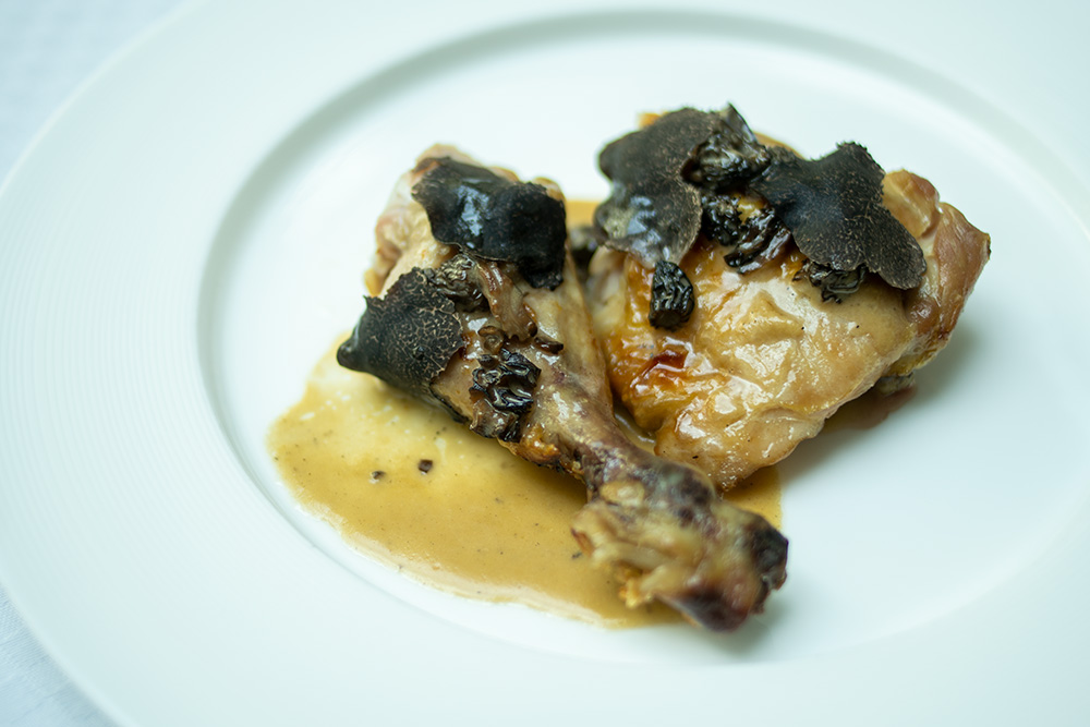 Fricasee of Chicken with Morels